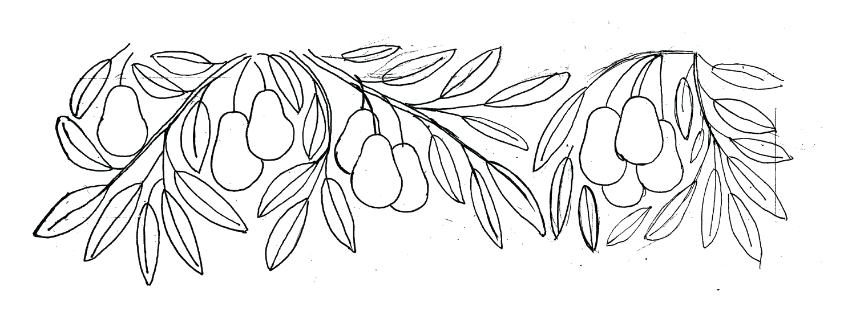 avocado pattern_draw